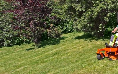 Achtung: der Rasen wächst wieder!